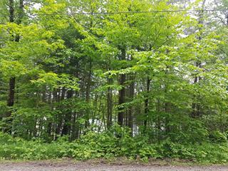 Lot for sale in Rivière-Rouge, Laurentides, Chemin du Lac-Kiamika, 25692988 - Centris.ca