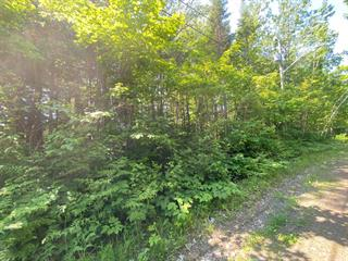 Lot for sale in Shawinigan, Mauricie, Rue des Merisiers, 25301408 - Centris.ca