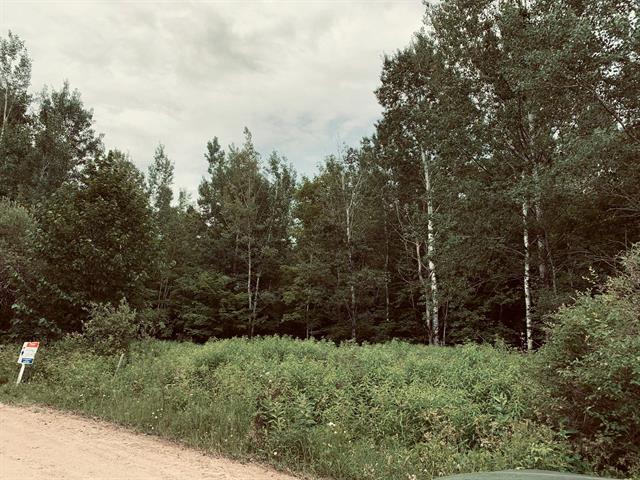 Terrain à vendre à Nominingue, Laurentides, Chemin des Saules, 9942908 - Centris.ca