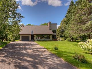 Maison à vendre à Saint-Sauveur, Laurentides, 48, Avenue des Seigneurs, 12088376 - Centris.ca