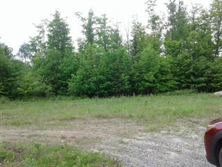 Terrain à vendre à Mont-Laurier, Laurentides, Chemin  Pierrot, 26006661 - Centris.ca