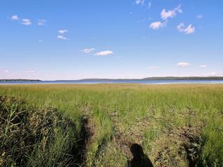 Terrain à vendre à Senneterre - Paroisse, Abitibi-Témiscamingue, Chemin de la Baie-du-Repos, 18224765 - Centris.ca