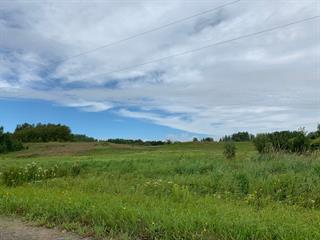 Land for sale in Rouyn-Noranda, Abitibi-Témiscamingue, Rang  Alarie, 17373281 - Centris.ca