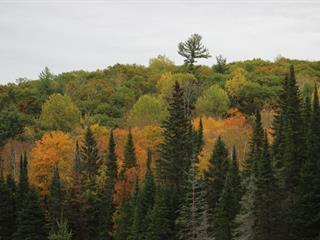 Terre à vendre à La Pêche, Outaouais, 130, Chemin du Klondike, 9051040 - Centris.ca