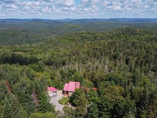 Maison à vendre à Sainte-Adèle, Laurentides, 6420, Chemin du Lac-Pilon, 12261548 - Centris.ca