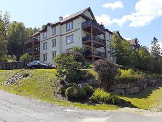 Condo à vendre à Mont-Tremblant, Laurentides, 145, Rue du Ruisseau-Clair, app. 104, 15125380 - Centris.ca