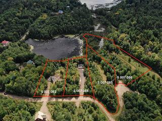 Lot for sale in Saint-Gabriel-de-Brandon, Lanaudière, Chemin  Lac Patricia, 27666404 - Centris.ca