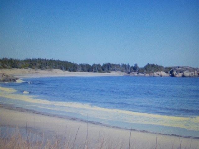 Terrain à vendre à Rivière-au-Tonnerre, Côte-Nord, Petite Anse de Ridge Point, 21839649 - Centris.ca