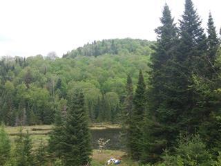Terre à vendre à Val-des-Lacs, Laurentides, Chemin  Beaupré, 23586772 - Centris.ca
