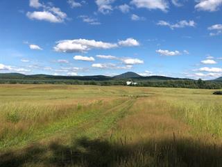 Terrain à vendre à Potton, Estrie, Route de Mansonville, 19996811 - Centris.ca