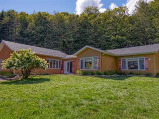 House for sale in Val-David, Laurentides, 1242, Route  117, 10661802 - Centris.ca