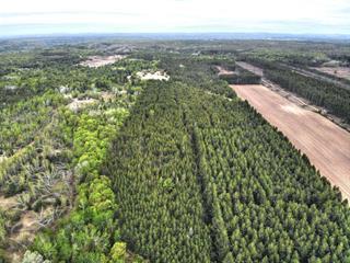 Terrain à vendre à Notre-Dame-du-Mont-Carmel, Mauricie, Z, Rang  Saint-Flavien, 16221050 - Centris.ca