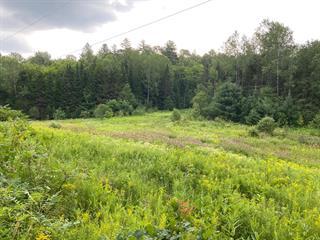 Land for sale in Mulgrave-et-Derry, Outaouais, Chemin  Jones, 9102229 - Centris.ca