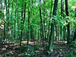Land for sale in Lac-Brome, Montérégie, Chemin de la Baie-Robinson, 16754044 - Centris.ca