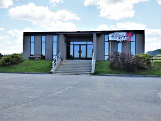 Commercial building for sale in Chambord, Saguenay/Lac-Saint-Jean, 74, Route  169, 22683544 - Centris.ca