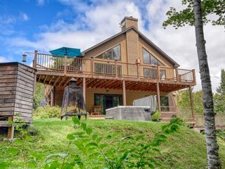 Maison à vendre à Mont-Tremblant, Laurentides, 110, Chemin du Lac-Dufour, 25033191 - Centris.ca