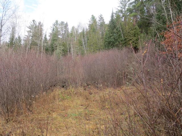 Terrain à vendre à Mandeville, Lanaudière, Chemin du Lac-Hénault Nord, 14432278 - Centris.ca
