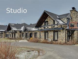 Loft / Studio à vendre à Orford, Estrie, 2240, Chemin du Parc, app. 115, 19136613 - Centris.ca
