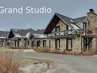 Loft / Studio à vendre à Orford, Estrie, 2240, Chemin du Parc, app. 102, 18114876 - Centris.ca