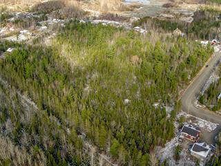 Terrain à vendre à Saint-Modeste, Bas-Saint-Laurent, Route de la Station, 9170027 - Centris.ca