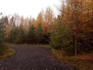 Terrain à vendre à Saint-Georges, Chaudière-Appalaches, 4e Avenue, 24066495 - Centris.ca