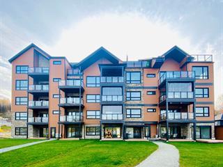 Condo for sale in Saint-Ferdinand, Centre-du-Québec, 1035, Rue  Principale, apt. 105, 18176082 - Centris.ca