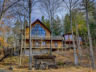 Maison à vendre à Lac-Sainte-Marie, Outaouais, 75 - 76X, Chemin de la Baie-du-Pré, 24667891 - Centris.ca