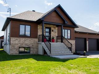 Maison à vendre à Notre-Dame-du-Bon-Conseil - Village, Centre-du-Québec, 263, Rue  Mitchell, 23549023 - Centris.ca