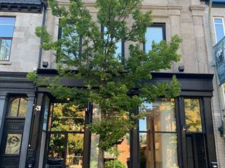 Condo / Apartment for rent in Montréal (Le Sud-Ouest), Montréal (Island), 1384, Rue  Notre-Dame Ouest, apt. 100, 12677080 - Centris.ca