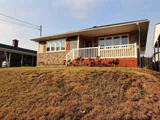 House for sale in La Tuque, Mauricie, 319, Rue  Élisabeth, 21498996 - Centris.ca
