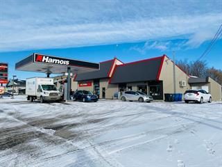 Bâtisse commerciale à vendre à Saint-Ambroise-de-Kildare, Lanaudière, 924, Route  343, 18421061 - Centris.ca