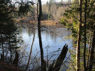 Terrain à vendre à Mansfield-et-Pontefract, Outaouais, 133, Chemin des Rapides, 11626269 - Centris.ca