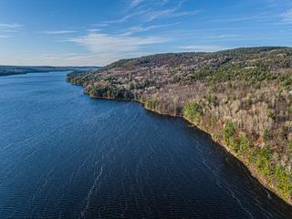 Terre à vendre à Sheenboro, Outaouais, Rue  Non Disponible-Unavailable, 22758893 - Centris.ca