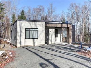 House for sale in La Conception, Laurentides, 130Z, Rue du Mont-Washington, 27200845 - Centris.ca