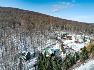 Cottage for sale in Frelighsburg, Montérégie, 117, Chemin des Érables, 21146115 - Centris.ca