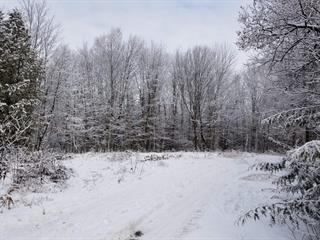 Terrain à vendre à Chertsey, Lanaudière, Rue de la Baie, 26501550 - Centris.ca