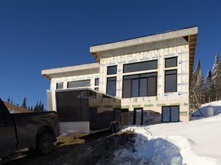 Maison à vendre à Saint-David-de-Falardeau, Saguenay/Lac-Saint-Jean, 2, Rue de Méribel, 24975668 - Centris.ca