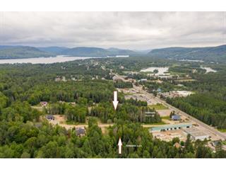 Terrain à vendre à Saint-Donat (Lanaudière), Lanaudière, Rue  Selesse, 22833437 - Centris.ca