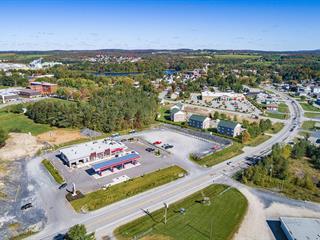 Local commercial à louer à Sherbrooke (Brompton/Rock Forest/Saint-Élie/Deauville), Estrie, 445, Rue  Laval, local 1, 20000399 - Centris.ca