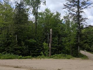 Terrain à vendre à Mayo, Outaouais, 2, Chemin  Lavell, 10762900 - Centris.ca