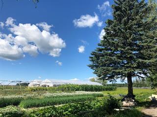 Hobby farm for sale in Saint-Antoine-sur-Richelieu, Montérégie, 408Z, Chemin de la Pomme-d'Or, 18253193 - Centris.ca