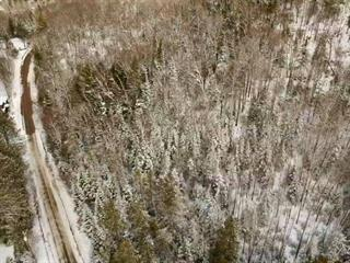 Lot for sale in Lac-Simon, Outaouais, Chemin  Caron, 16504030 - Centris.ca