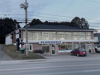 Commercial building for sale in Mont-Laurier, Laurentides, 1141, boulevard  Albiny-Paquette, 10956485 - Centris.ca