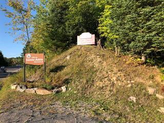 Lot for sale in Sainte-Adèle, Laurentides, 109, boulevard de Sainte-Adèle, 23222324 - Centris.ca