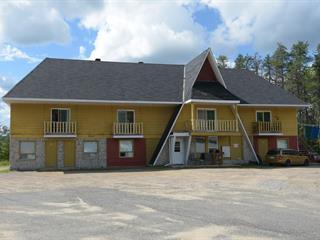 Immeuble à revenus à vendre à La Tuque, Mauricie, 3245, Rue des Pommiers, 14652319 - Centris.ca