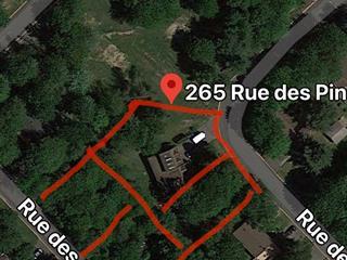Maison à vendre à Saint-Amable, Montérégie, 265, Rue des Pins, 9884225 - Centris.ca