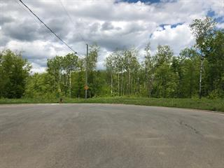Terrain à vendre à Shawinigan, Mauricie, Rue  Jacques-Héroux, 25022448 - Centris.ca