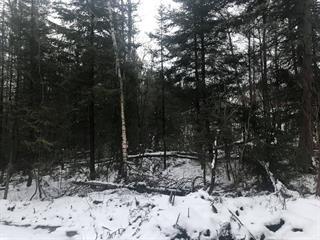 Terrain à vendre à Saguenay (La Baie), Saguenay/Lac-Saint-Jean, boulevard de la Grande-Baie Sud, 22160291 - Centris.ca
