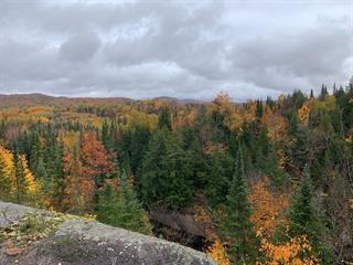 Terrain à vendre à Amherst, Laurentides, Chemin des Monarques, 25106061 - Centris.ca