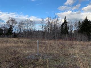 Terrain à vendre à Trois-Pistoles, Bas-Saint-Laurent, Rue  Jeanne-Plourde, 27186090 - Centris.ca